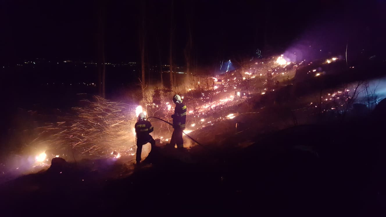 požáry lesa